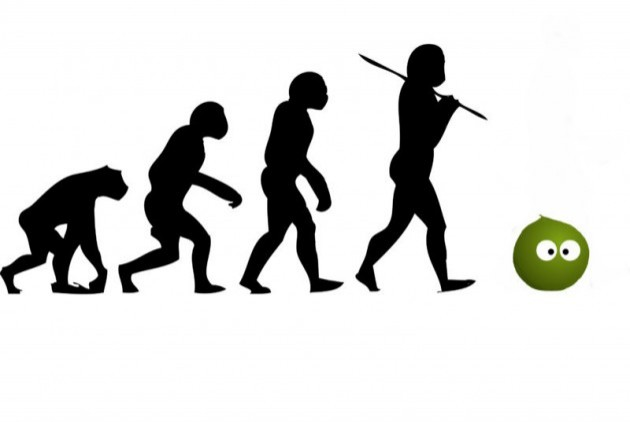 Evolution of man and pea