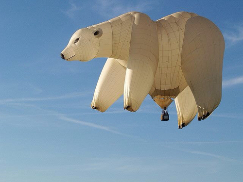 Polar bear balloon ride gift