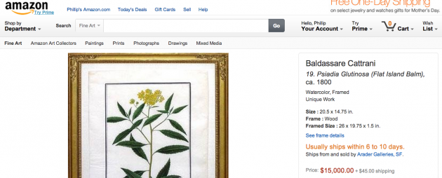 Amazon $15000 flower picture