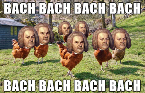 Bach turkeys